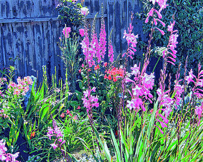 Los Osos Flower Garden Art Print