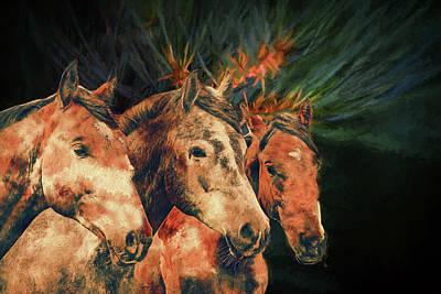 Photograph - Los Tres Amigos by Ericamaxine Price