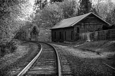 Photograph - Lost Along The Track by Steven Clark