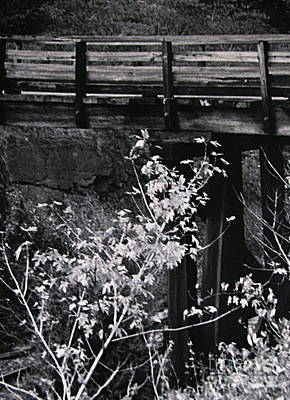 Black Is Beautiful Photograph - Lost Bridge by Colleen Kammerer