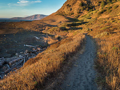 Photograph - Lost Coast Trail 2 by Greg Nyquist