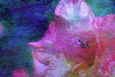 Lost Gladiolus Blossom 3018 L_2 Art Print