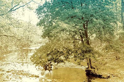 Photograph - Lost In Chester County by Susan Maxwell Schmidt