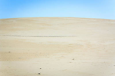 Photograph - Lost In Sand by Joni Eskridge