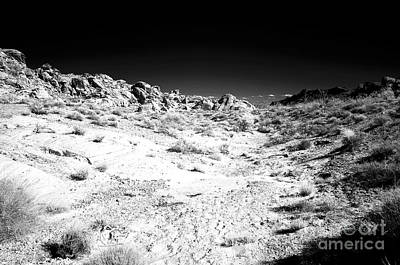 Photograph - Lost In The Desert by John Rizzuto