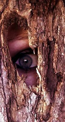 Digital Art - Lost In The Woods by Danielle R T Haney