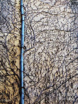 Photograph - Lost by Eena Bo
