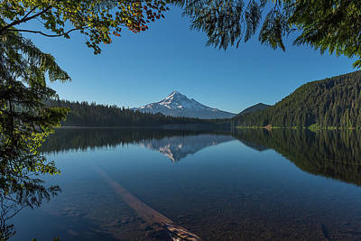 Photograph - Lost Lake Reflections Of Mount Hood by Brenda Jacobs
