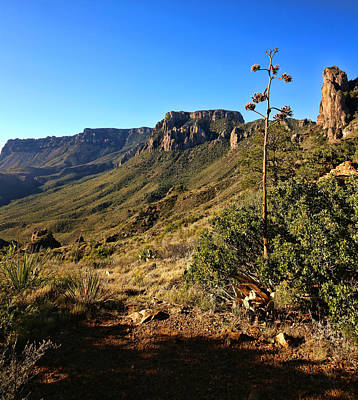 Photograph - Lost Mine Trail In Big Bend National Park 2 by Judy Vincent