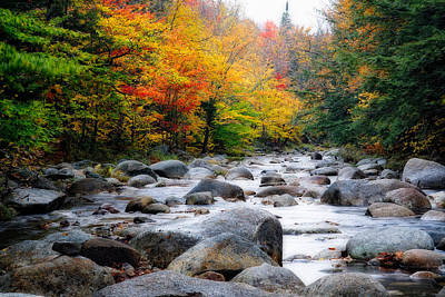 Lost River Gorge At Fall  New Hampshire Art Print by George Oze