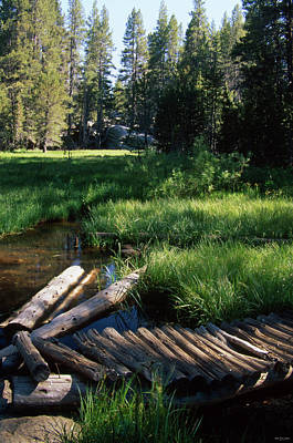 Golden Trout Photograph - Lost Trout Creek by Soli Deo Gloria Wilderness And Wildlife Photography