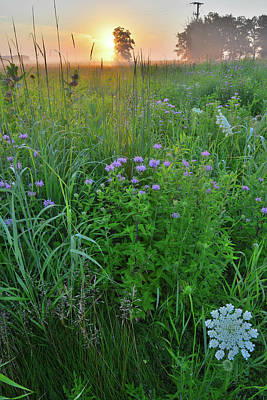 Photograph - Lost Valley Prairie At Sunrise In Glacial Park by Ray Mathis