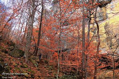 Photograph - Lost Valley Trail - Ponca, Ar by Wesley Nesbitt