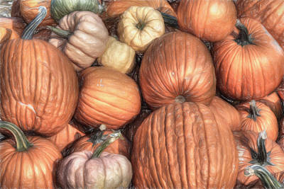 Pumpkin Patch Photograph - Lots O' Pumpkins by Donna Kennedy
