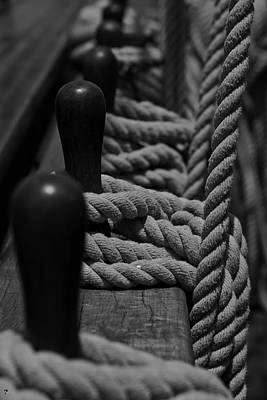 Lots Of Knots Original