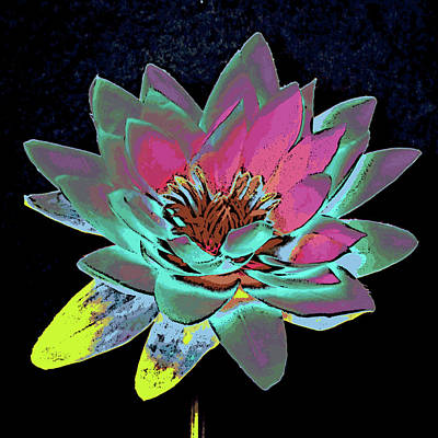 Mixed Media - Lotus 2 by Ann Tracy