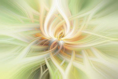 Lotus Abstract Art Print by Terry DeLuco