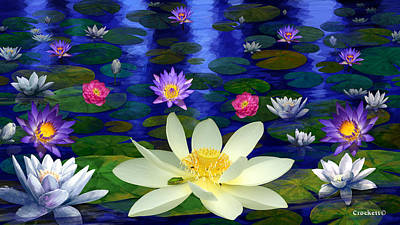 Photograph - Lotus And Water Lily Pond At Midnight A by Gary Crockett