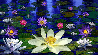 Photograph - Lotus And Water Lily Pond At Midnight B by Gary Crockett