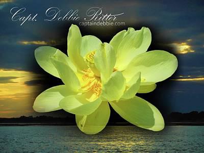 Photograph - Lotus Art by Captain Debbie Ritter