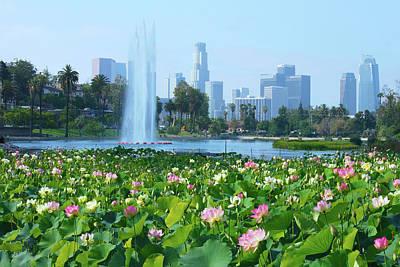 Photograph - Lotus Blooms And Los Angeles Skyline by Ram Vasudev