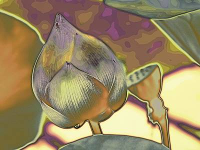 Digital Art - Lotus Dreaming 5 by Fran Woods