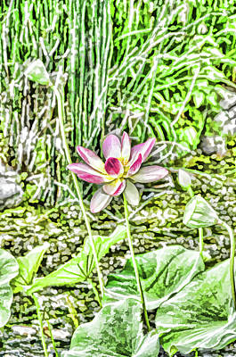 Background Painting - Lotus Flower Bloom In Pink 2 by Lanjee Chee