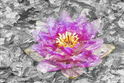 Painting - Lotus Flower by Lita Kelley