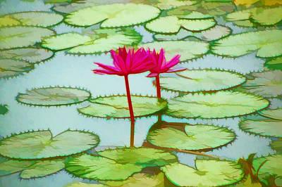 Lotus Flower On The Water 3 Art Print