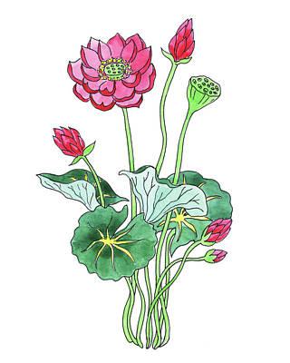 Nirvana - Lotus Flower Watercolor by Irina Sztukowski