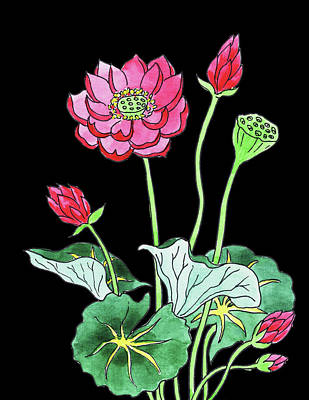 Lilies Royalty-Free and Rights-Managed Images - Lotus Flower Watercolour by Irina Sztukowski