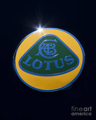 Photograph - Lotus by John Zawacki