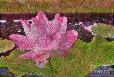 Photograph - Lotus by Kathie Chicoine