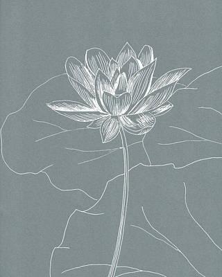 Drawing - Lotus by Masha Batkova
