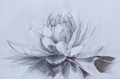 Lotus Art Print by Nicole Marinette