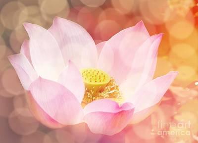 Lotus  Print by Jacky Gerritsen