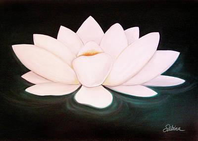 White Lotus Painting - Lotus by Sabina Espinet