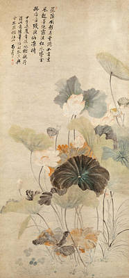 A Summer Evening Drawing - Lotuses On A Summer Evening by Yun Shouping