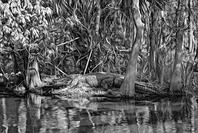 Cypress Swamp Photograph - Louisiana Bayou 3 - Paint Bw by Steve Harrington
