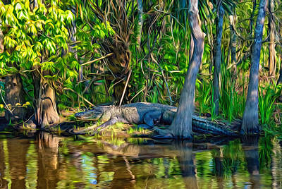 Cypress Swamp Digital Art - Louisiana Bayou 3 - Paint by Steve Harrington