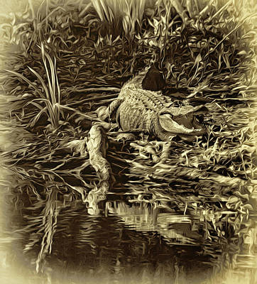 Cypress Swamp Photograph - Louisiana Bayou 3 - Sepia by Steve Harrington