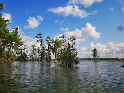 Photograph - Louisiana Bayou by Mary Capriole