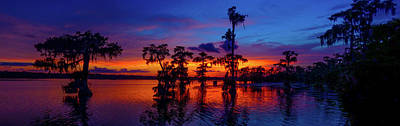 Louisiana Blue Salute Reprise Art Print