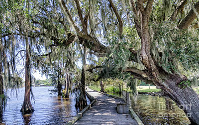 Photograph - Louisiana Boardwalk - Fairview Riverside State Park by Kathleen K Parker