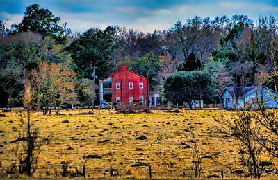 Photograph - Louisiana Chickpea Homestead by Diana Mary Sharpton