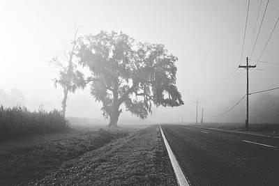 Louisiana Hwy 308 Art Print