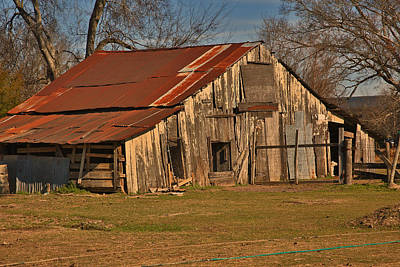 Photograph - Louisians Cypress Cajun Barn by Ronald Olivier