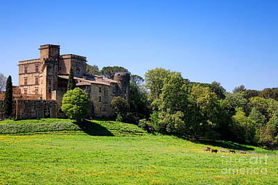 Photograph - Lourmarin Castle by Olivier Le Queinec