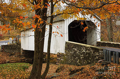 Photograph - Loux Covered Bridge by Debra Fedchin