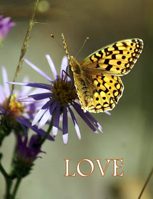 Greeting Card - Love 1 by Marty Koch